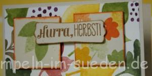 Hurra Herbst 4