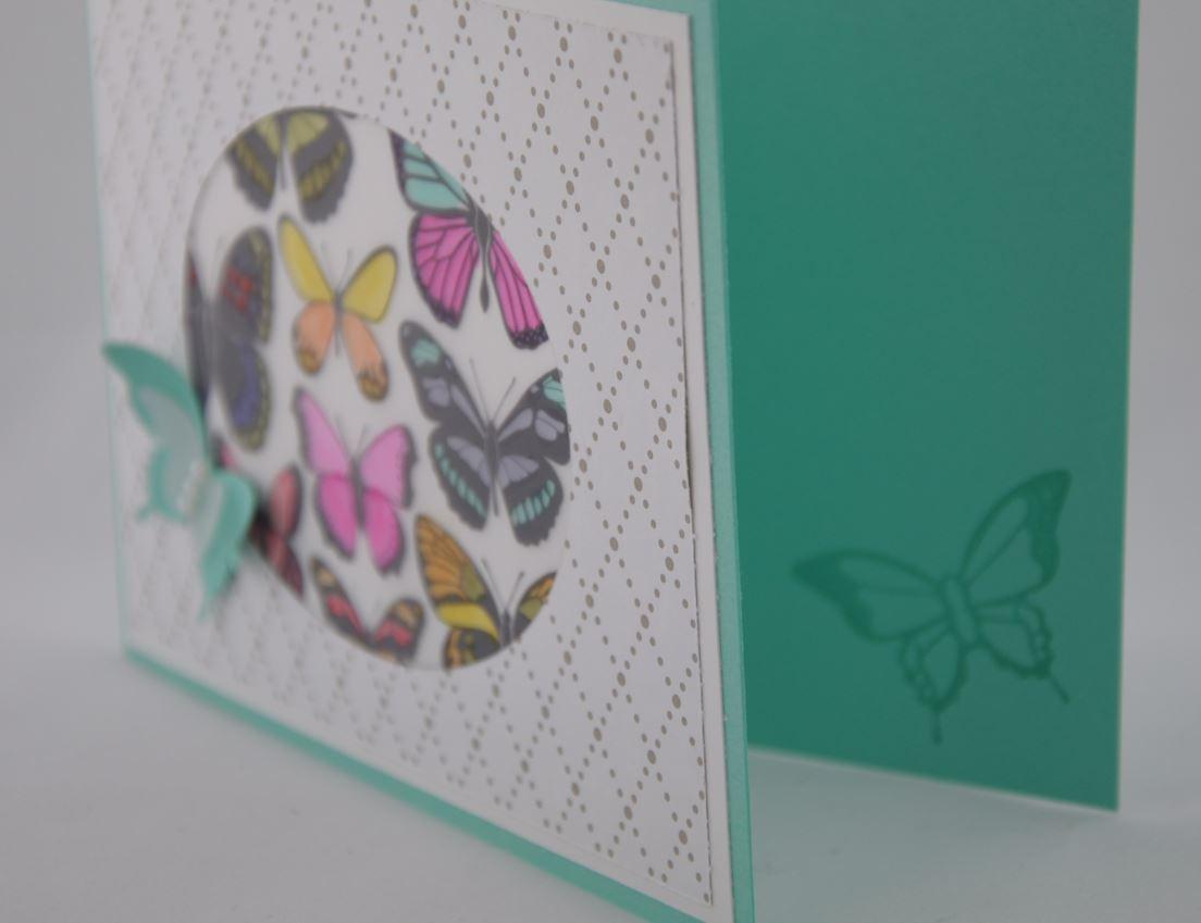 Schmetterlingsfenster 3