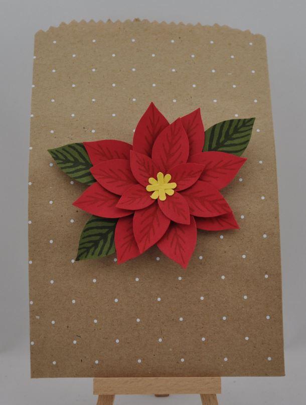 Blume Weihnachtsstern 1