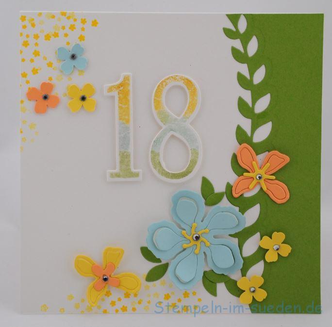 18. Geburtstag 1