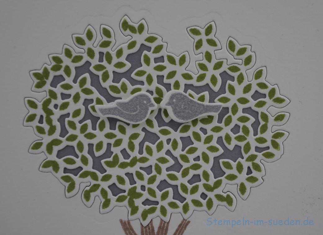 Tauben im Baum 2