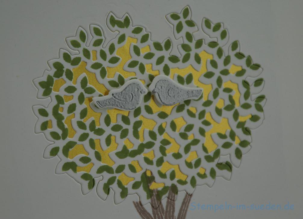 Tauben im Baum 3